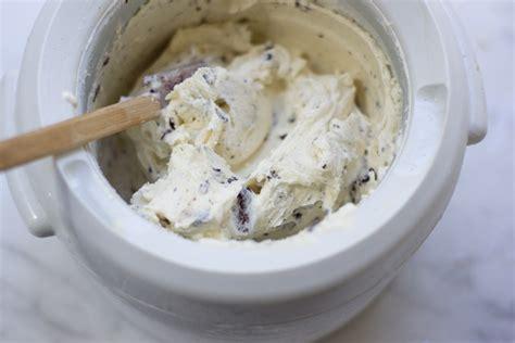 fresh mint chip frozen yogurt recipe 101 cookbooks