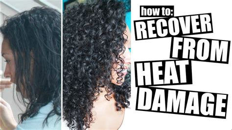 how to get your hair back to its color how to recover from heat damage to healthy curly hair