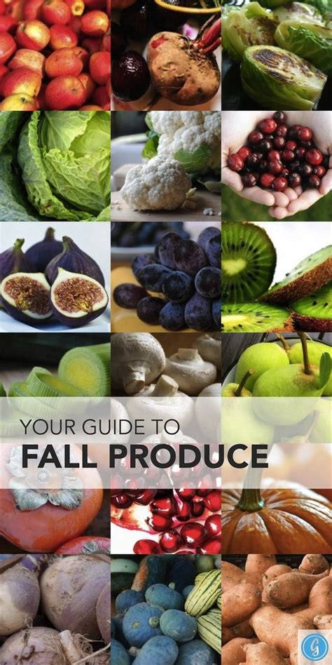 Which Ones Are Fall Fruits by The Best Fruits And Veggies To Eat This Fall Fitness