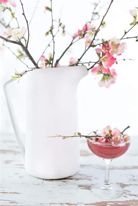 martini cherry cherry blossom cocktail design sponge