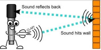 echo is a distinct reflected sound wave from a surface