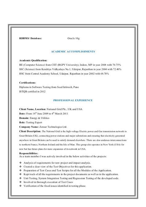 senior programmer description software developer