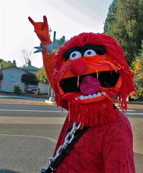 animal costume   muppets