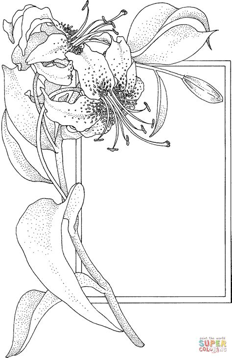 tiger lily coloring page fashion illustrations art fantasy drawings on