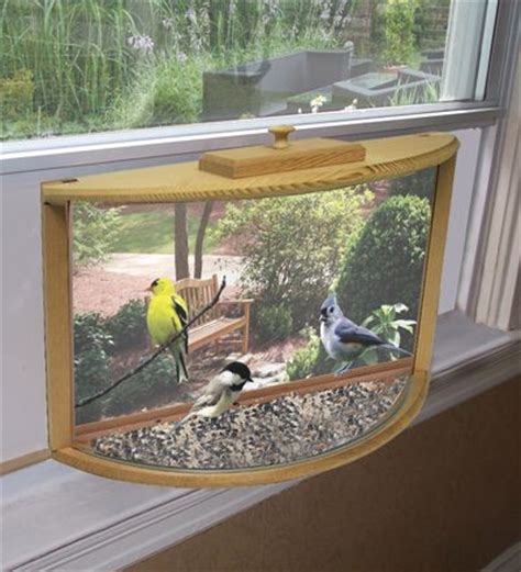window bird houses 10 best ideas about window bird feeders on pinterest bird feeder plans bird