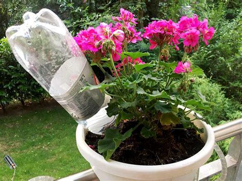 bewässerungsanlage garten blumen gie 223 en mit dem handy