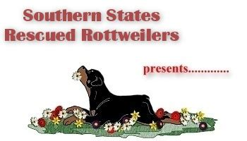 southern states rescued rottweilers the rottweiler chronicle southern states rescued rottweilers