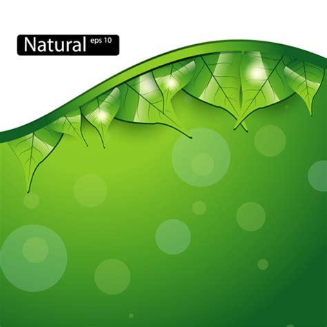 background design leaves shiny green leaves background design vector 03 vector