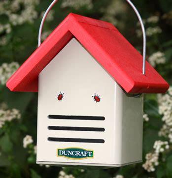 Duncraft Com Duncraft Eco Ladybug House