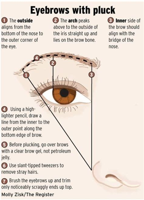 a visual guide to eyebrow shapes 25 things your mom should have told you eyebrow makeup