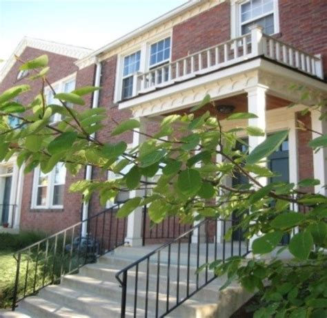 the barkalow apartments rentals arlington va