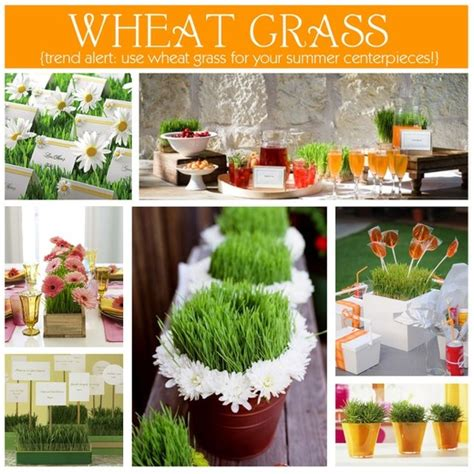 wheat grass centerpieces wheat grass for centerpieces table settings