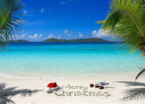top  christmas cruises