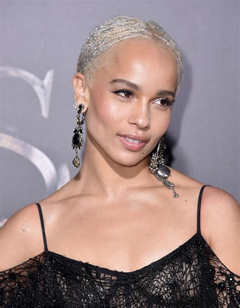 Zoe Kravitz Braided Updo   Braided Updo Lookbook   StyleBistro