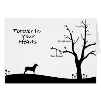 grief cards templates sympathy cards greeting photo cards zazzle
