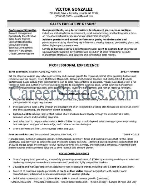 Sle Executive Summary In Resume Sales Executive Resume Sle Exle
