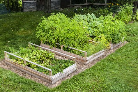 Mulch For Vegetable Garden Beds 32 Raised Wooden Garden Bed Designs Exles