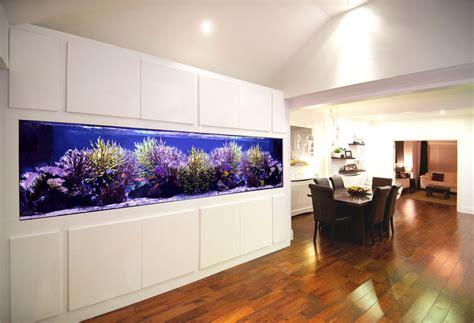 House Designs Kitchen Custom Built Aquariums Seahorse Aquariums Ltd