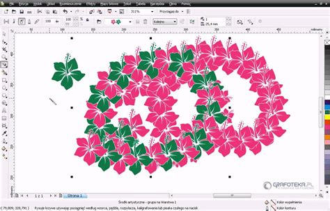youtube tutorial corel draw x4 coreldraw x4 tutorial pl wektorowy hibiskus część 2