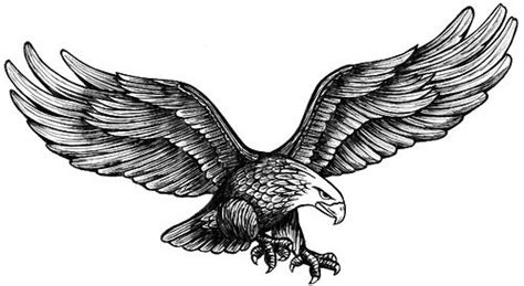 eagle by rusty knuckles via flickr tattoo ideas
