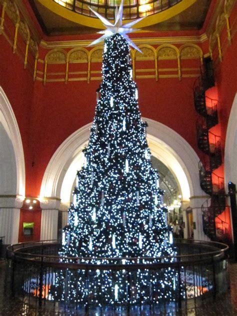 a christmas tree hunt in the sydney cbd kidtown sydney