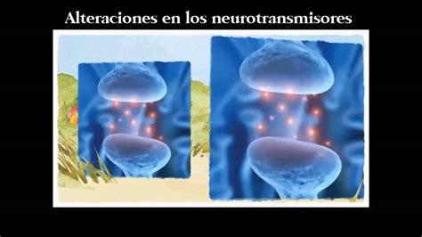 libro tratamiento natural del tdah tdah libro tratamiento natural youtube
