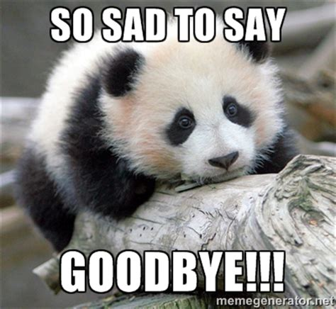 Sad Animal Memes - saying goodbye memes image memes at relatably com