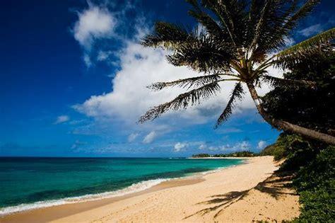 haleiwa tripadvisor  travel tourism weather
