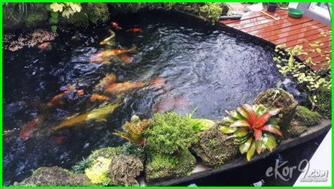 Bioball Alami kolam ikan koi yang baik dan benar ekor9