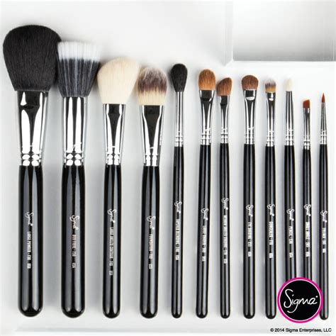 Jual Sigma Essential Kit 1000 images about sigma brushes the basics on sigma brushes brush set and makeup