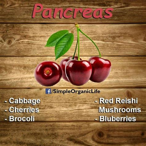 Pancreas Detox Foods by 15 Best Pancreas Diet Images On Home Remedies