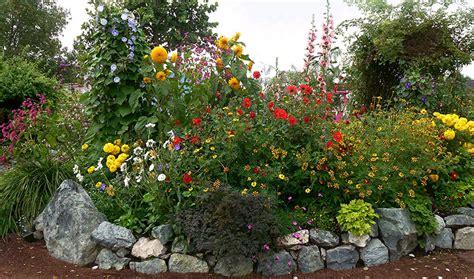 sun flower garden pin flowers blooming sunflowers backgrounds wallpapersjpg