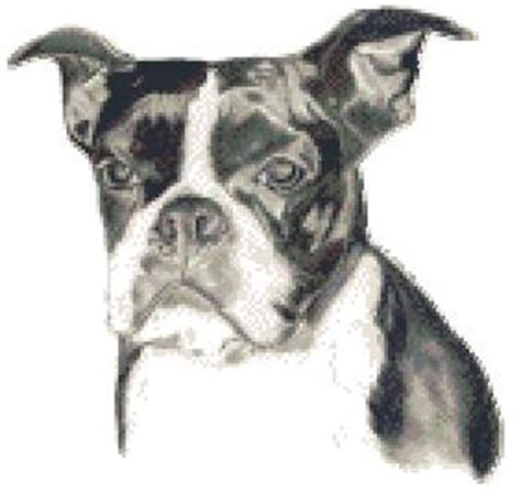 pattern maker boston boston terrier cross stitch patterns 187 patterns gallery