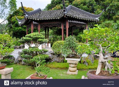 chinesischer japanischer garten singapur bonsai baum garten in der chinesischen und japanischen