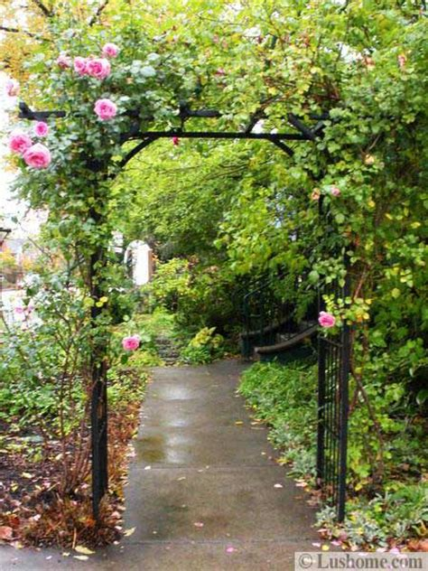 metal arches  beautiful yard landscaping ideas