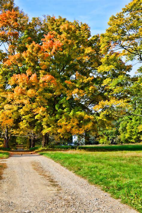 tree farms near appleton october trees appleton farms ipswich ma
