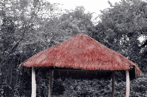 Thatch Hut Thatched Hut Photograph By Lori Strock