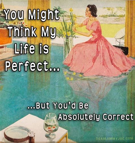 Housewife Meme - that s what she said 15 more 1950s housewife memes team