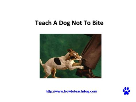 how to a not to bite when teach a not to bite