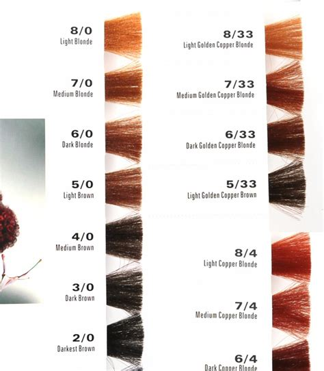 professional hair color products oem manufacturer salon professional hair dye color chart