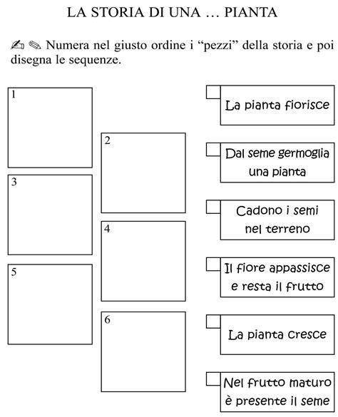 test prima ciclo ciclo della pianta classe seconda jpg materiale e schede