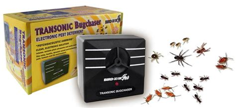 how to keep spiders out of basement keep spiders out of garage 2017 2018 best cars reviews