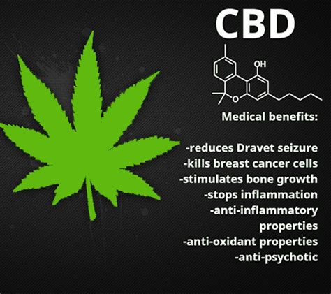 Can I Still Take Cbd While Detoxing by Cbd Cannabidiol In Marijuana