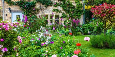 grow  cottage garden glorious