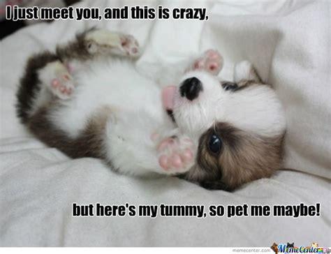 Pet Meme - pet me maybe by saxman2116 meme center