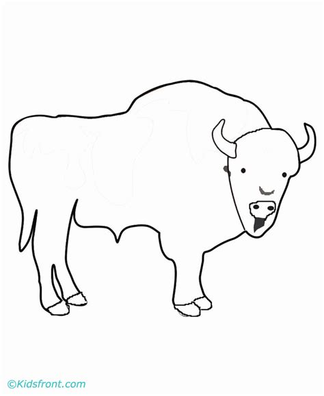 bison coloring page az coloring pages