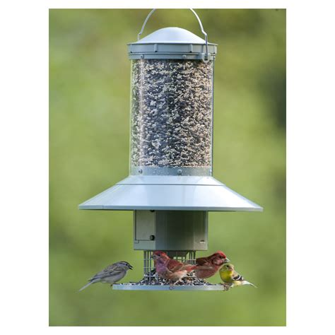Automatic Bird Feeder automatic bird feeder programmable timer seed dispenser less refilling ebay