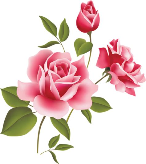 Hers Pink Alive Arts pink picture clipart 199 i 231 ek pink roses and