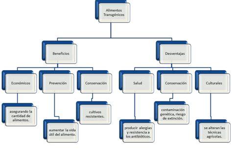 tipos de alimentos transgenicos alimentos transg 233 nicos mapas conceptuales 143924