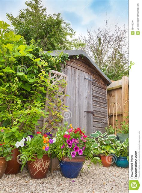 Colourful Sheds by Colorful Potted Plants Hiding A Garden Shed Stock Photo